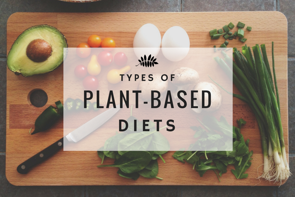different tpes of plant based diets