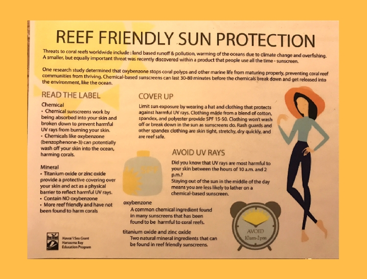 Hanauma Bay Infographic - Reef Friendly Sun Protection | smelltheroses.com