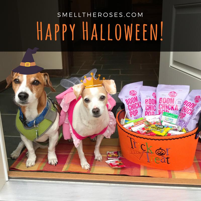 Happy Halloween! | smelltheroses.com