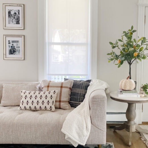 A living room seating area sty;ed with fall decor and pillows from Target.